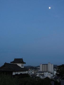 掛川城夕景