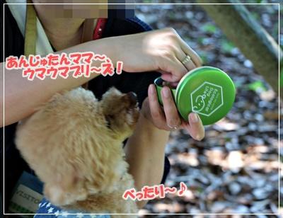 IMG_9497 (2)