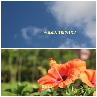 160808-7page.jpg