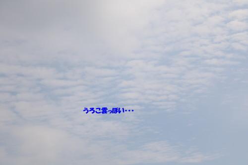 160918-2.jpg