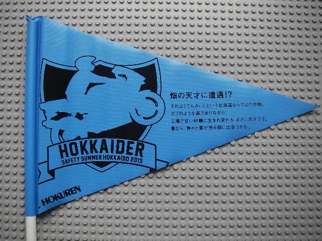 ホクレンフラッグ2015青1