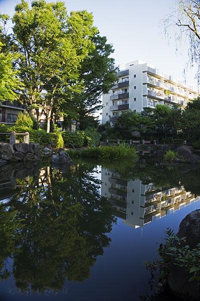 新井薬師公園011