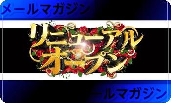 卓球丼メールマガジンリニューアル