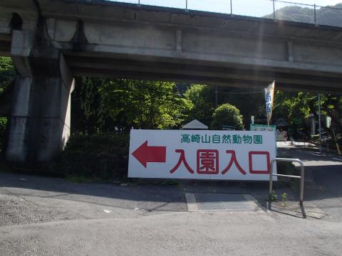160504高崎山02