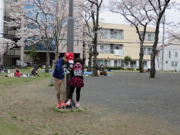 28.3.6森下公園お花見へ 020_ks