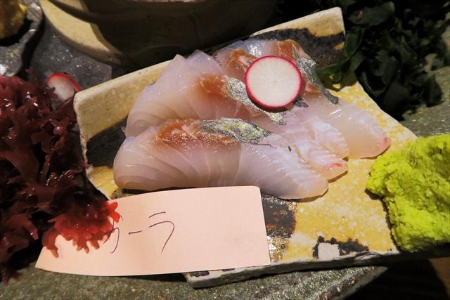 160804-大衆魚酒場こばやし-0010-T
