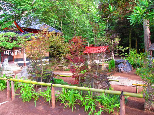 白幡神社境内を駐車場から見て完成