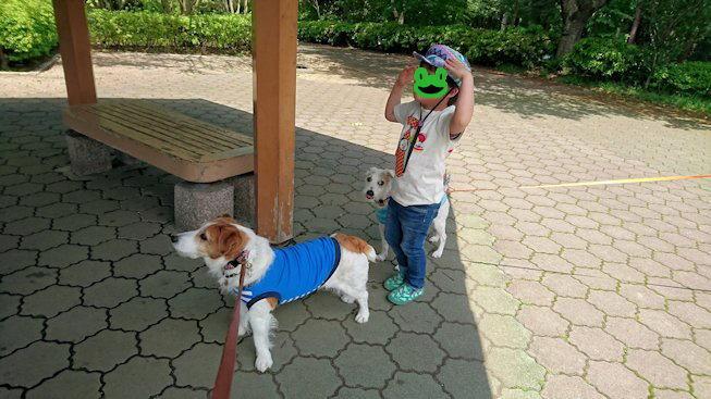 2016長岡公園0221