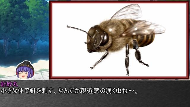 ゆっくり霊夢とやる夫が学ぶ 昆虫大百科 part28