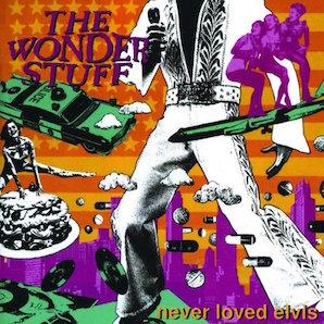 THE WONDER STUFF「NEVER LOVED ELVIS」