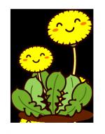 どんな環境でも、潜在意識、阿頼耶識は花を咲かせる