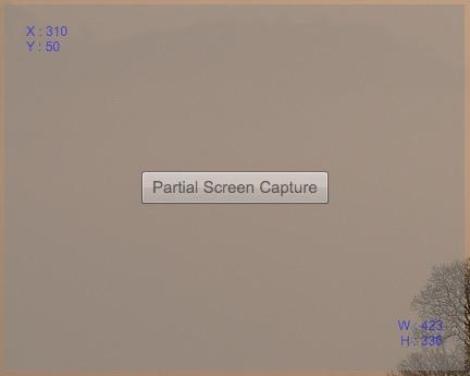 Partial_Screen_Capture
