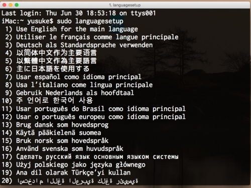 languagesetup_command