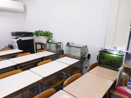 k-room4.jpg
