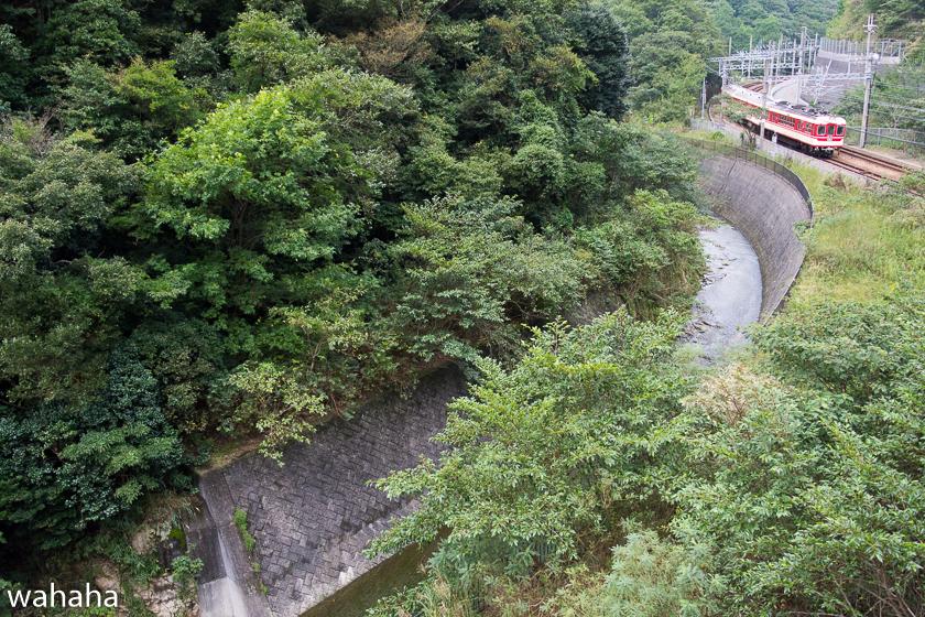 2801002suzurandai-1-1b.jpg