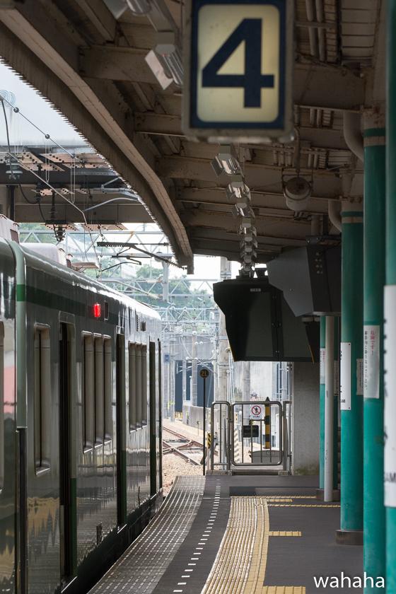 2801002tanigami-2-1.jpg