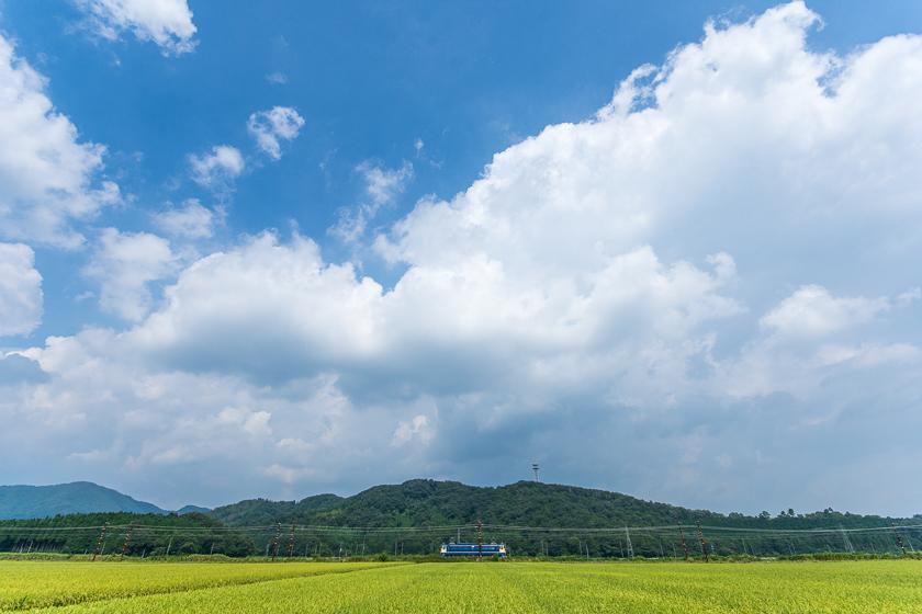 280814SLkitabiwako-3-3c.jpg