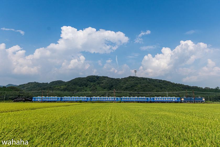 280814SLkitabiwako-3-4.jpg