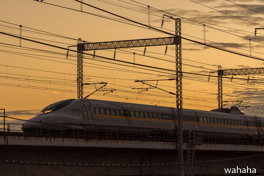 280828ichikawa-4.jpg