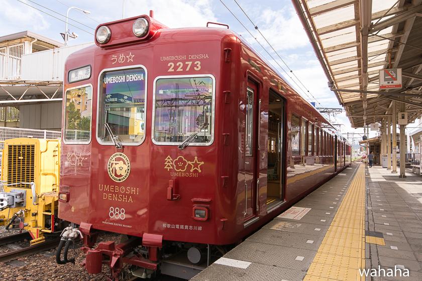 280917wakayamadentetsu-1-1.jpg