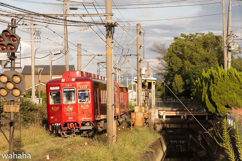 280917wakayamadentetsu-4-3.jpg