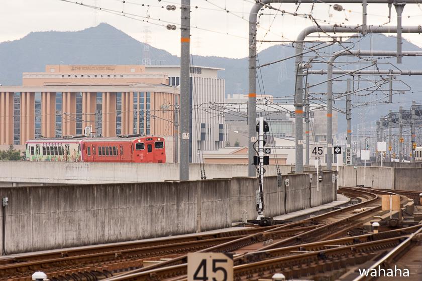 280925bashamichi_danrin--1.jpg