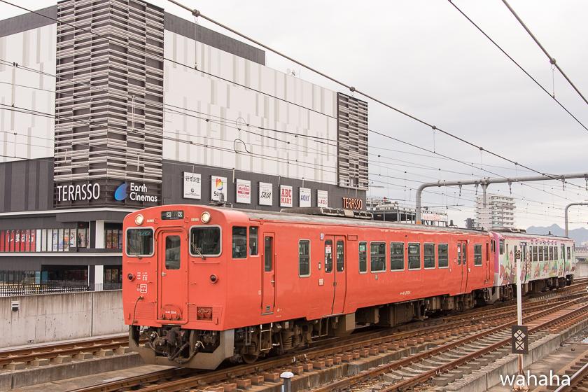 280925bashamichi_danrin--2.jpg