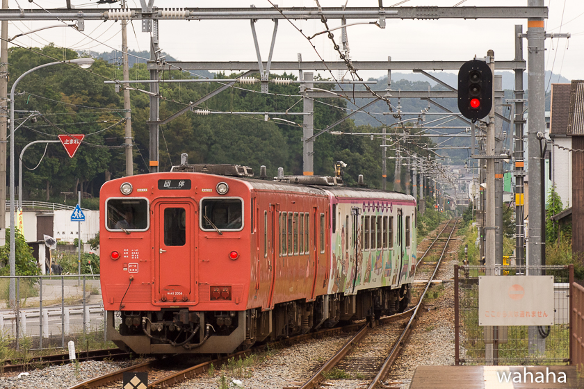 280925bashamichi_danrin--9.jpg