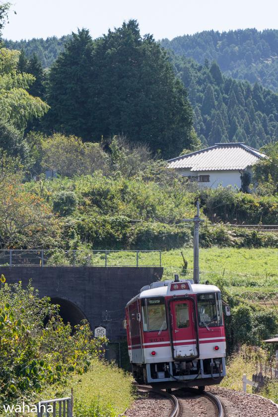281010chizukyu-3.jpg