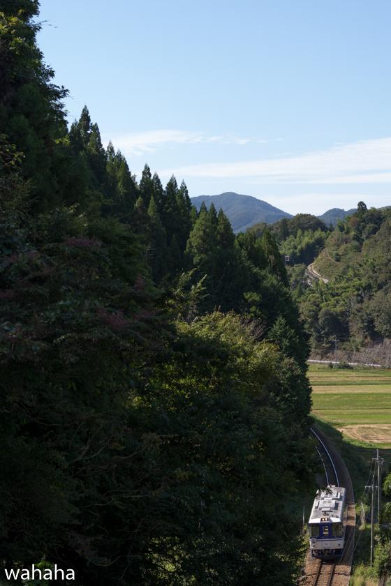 281010chizukyu-4.jpg