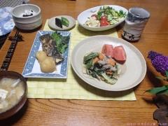 2016 07 15 今日の夕食 TG-620.jpg