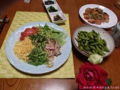 2016 08 05 今日の夕食 TG-620.jpg