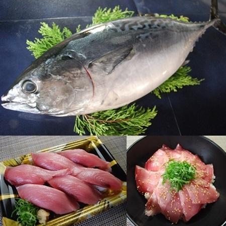 幻の魚『スマ』