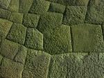 4.皇居の石垣:部分(梅林櫓石垣)-02D 0901q