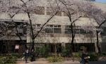 2.銀座桜通り-01D 1603qt