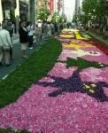 9.みゆき通り花祭り-04D 0904qt