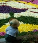 10.みゆき通り花祭り-26D 0904qt
