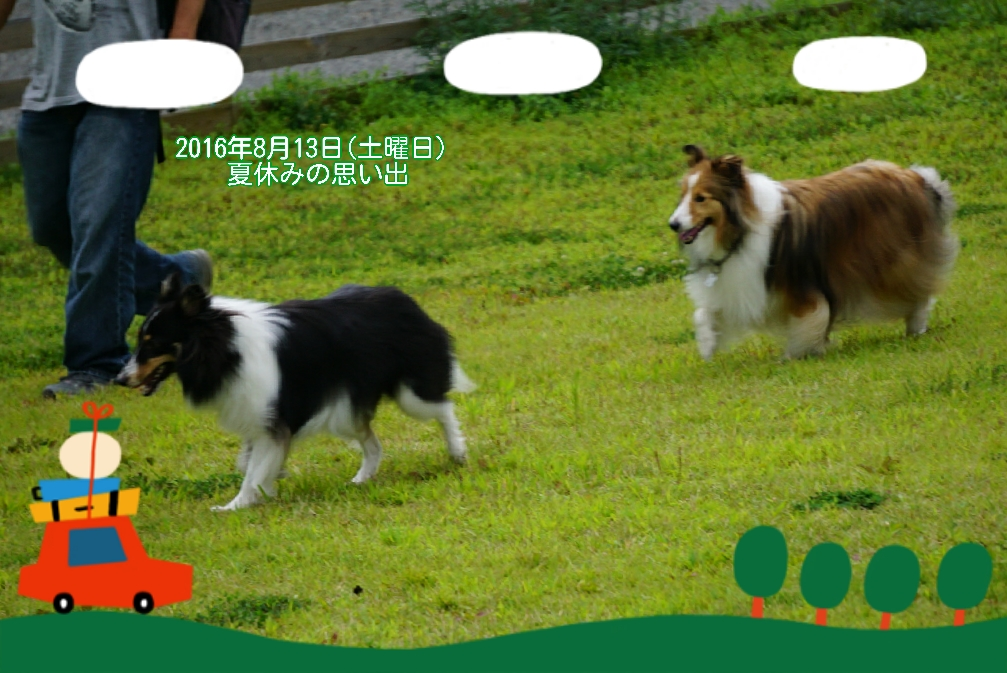 16-08-14-03-28-41-464_deco.jpg