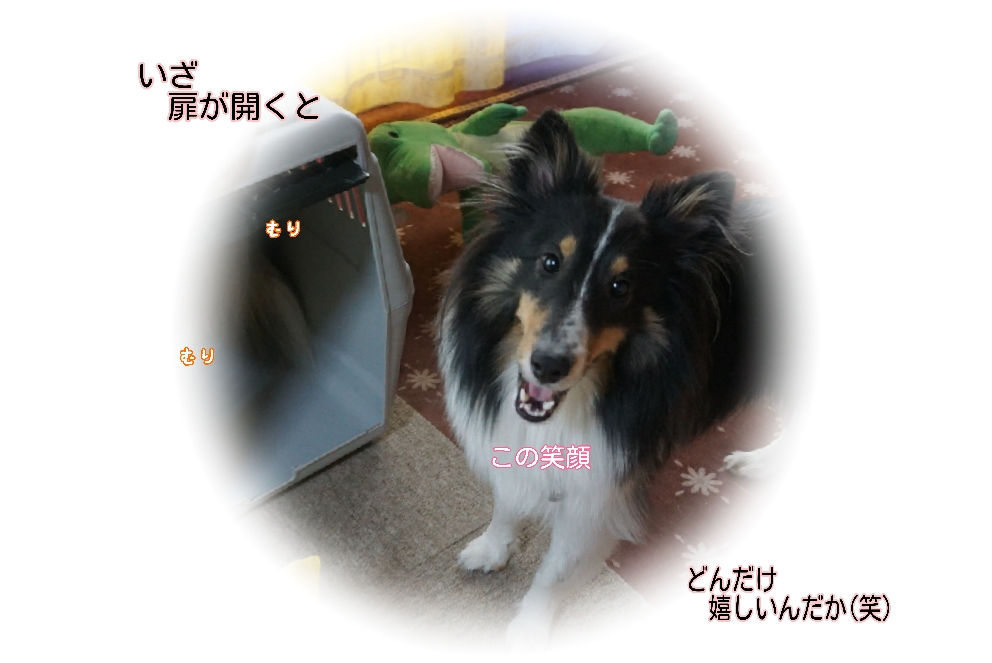 16-08-24-04-46-34-024_deco.jpg