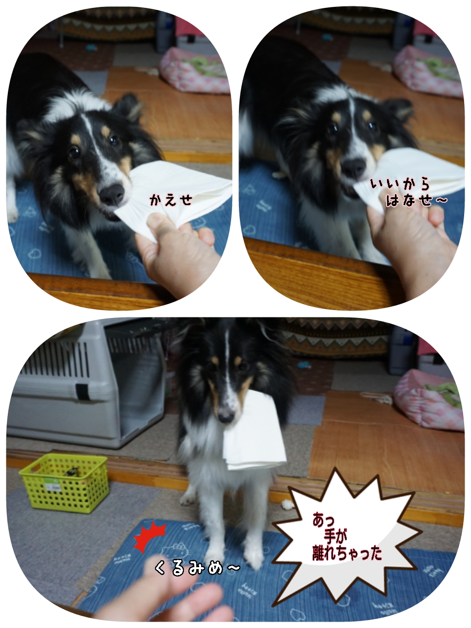 16-09-02-11-14-48-864_deco.jpg