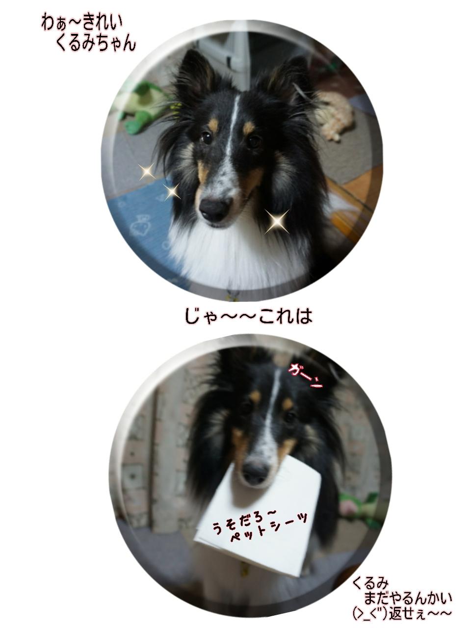16-09-02-12-01-25-715_deco.jpg