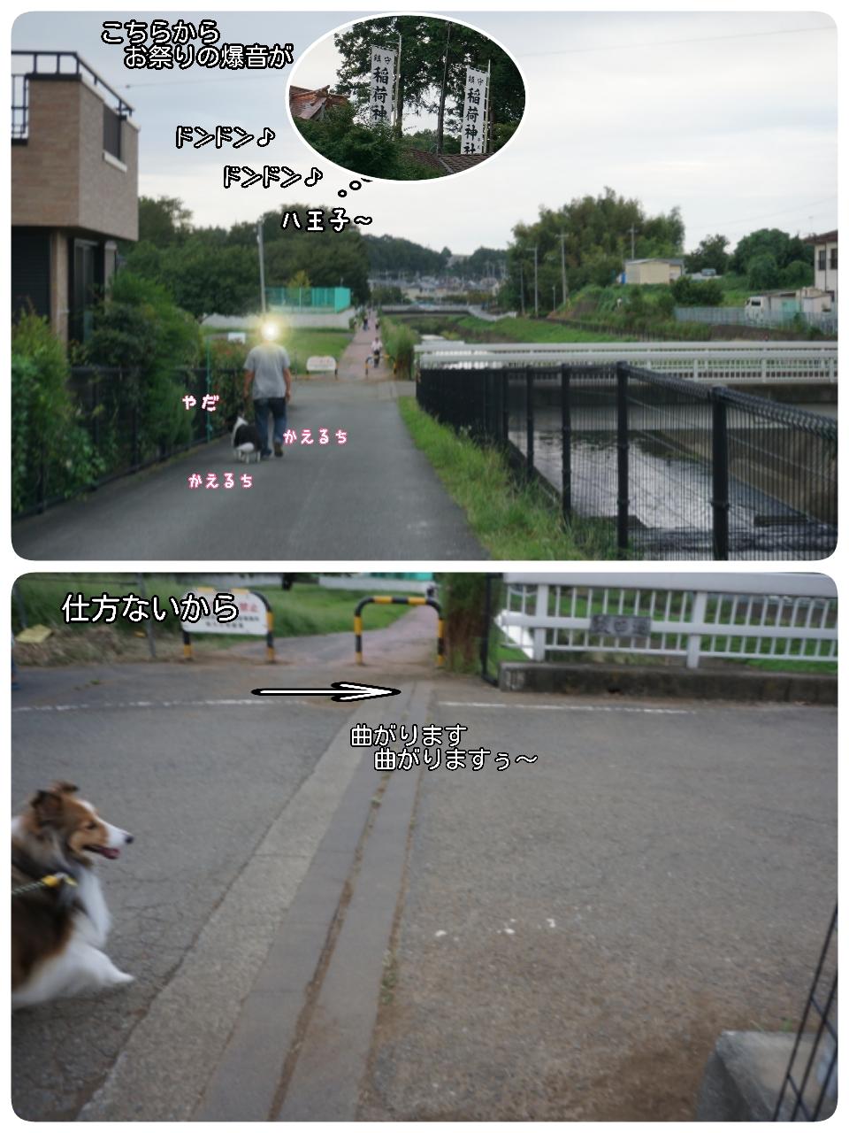 16-09-03-22-28-05-521_deco.jpg