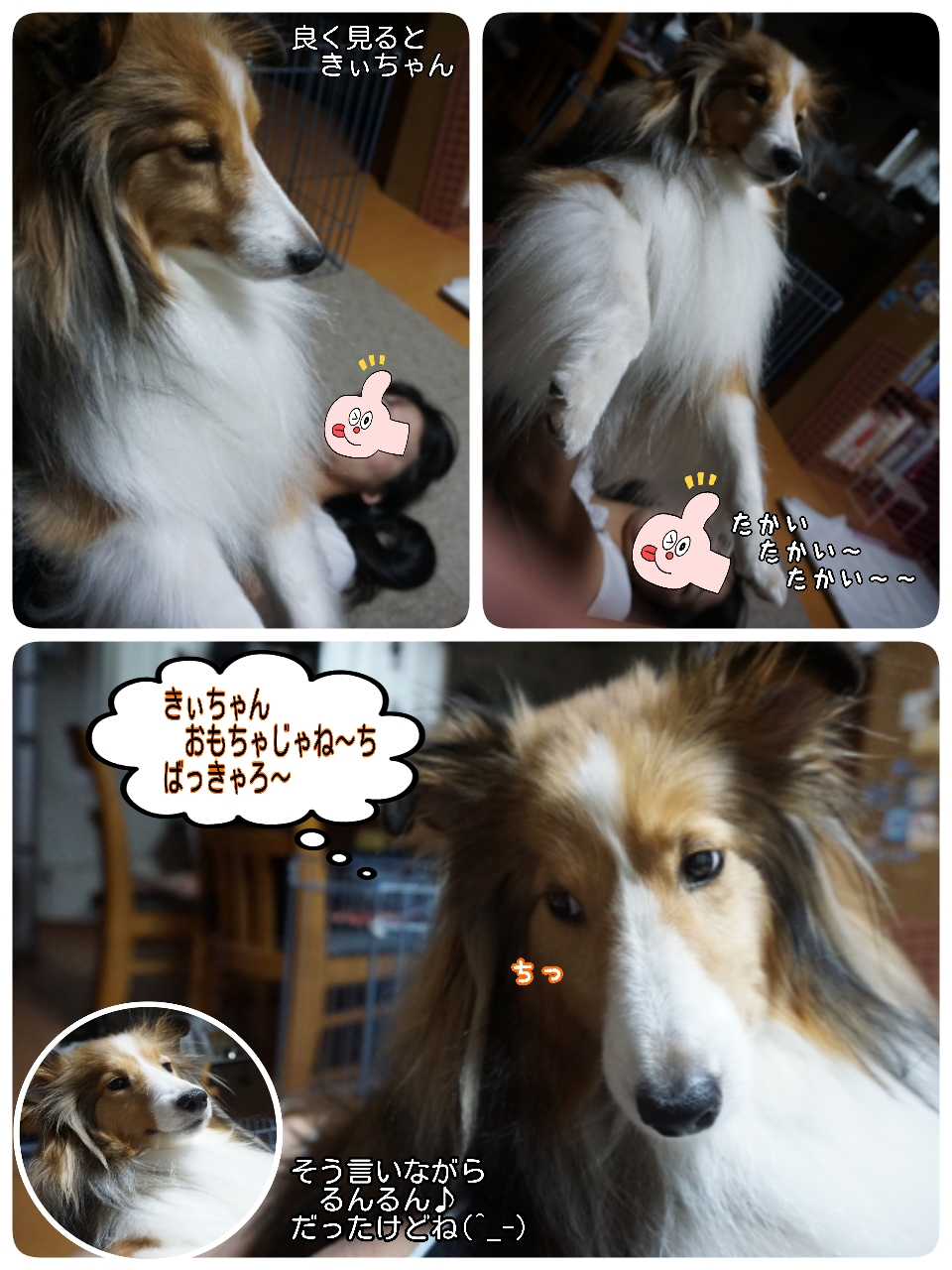 16-09-12-09-43-16-879_deco.jpg