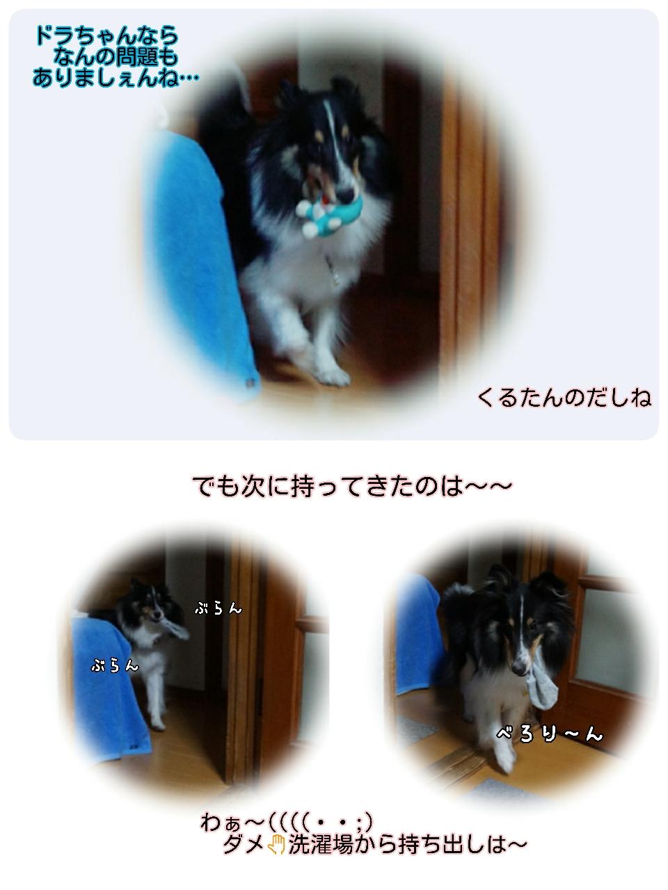 16-09-20-15-16-51-231_deco.jpg