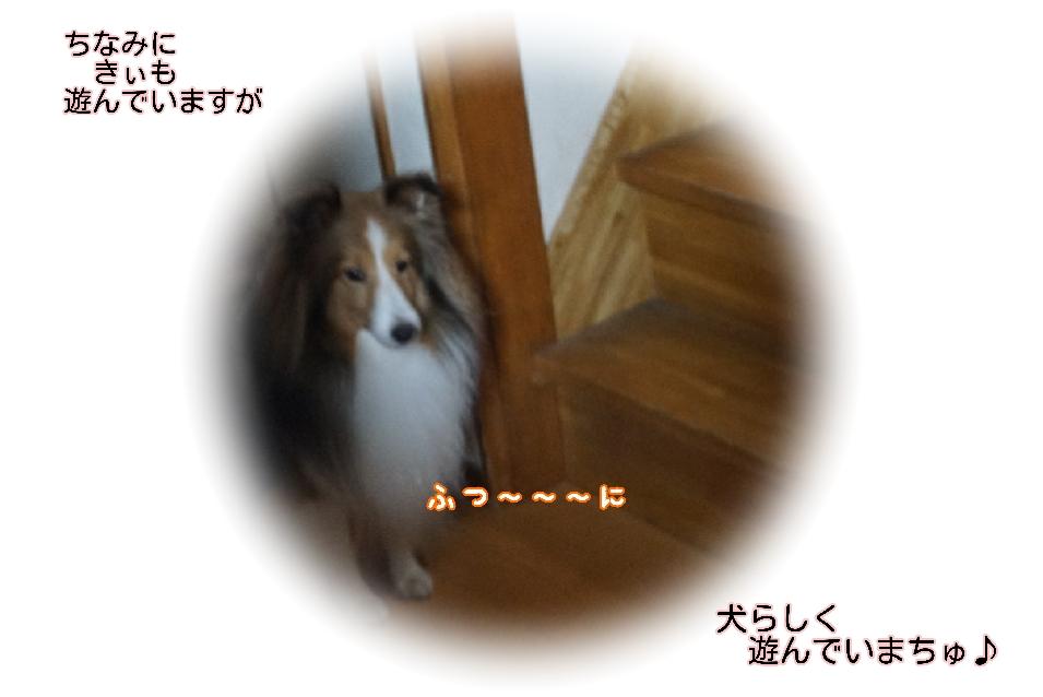 16-09-20-15-34-20-436_deco.jpg