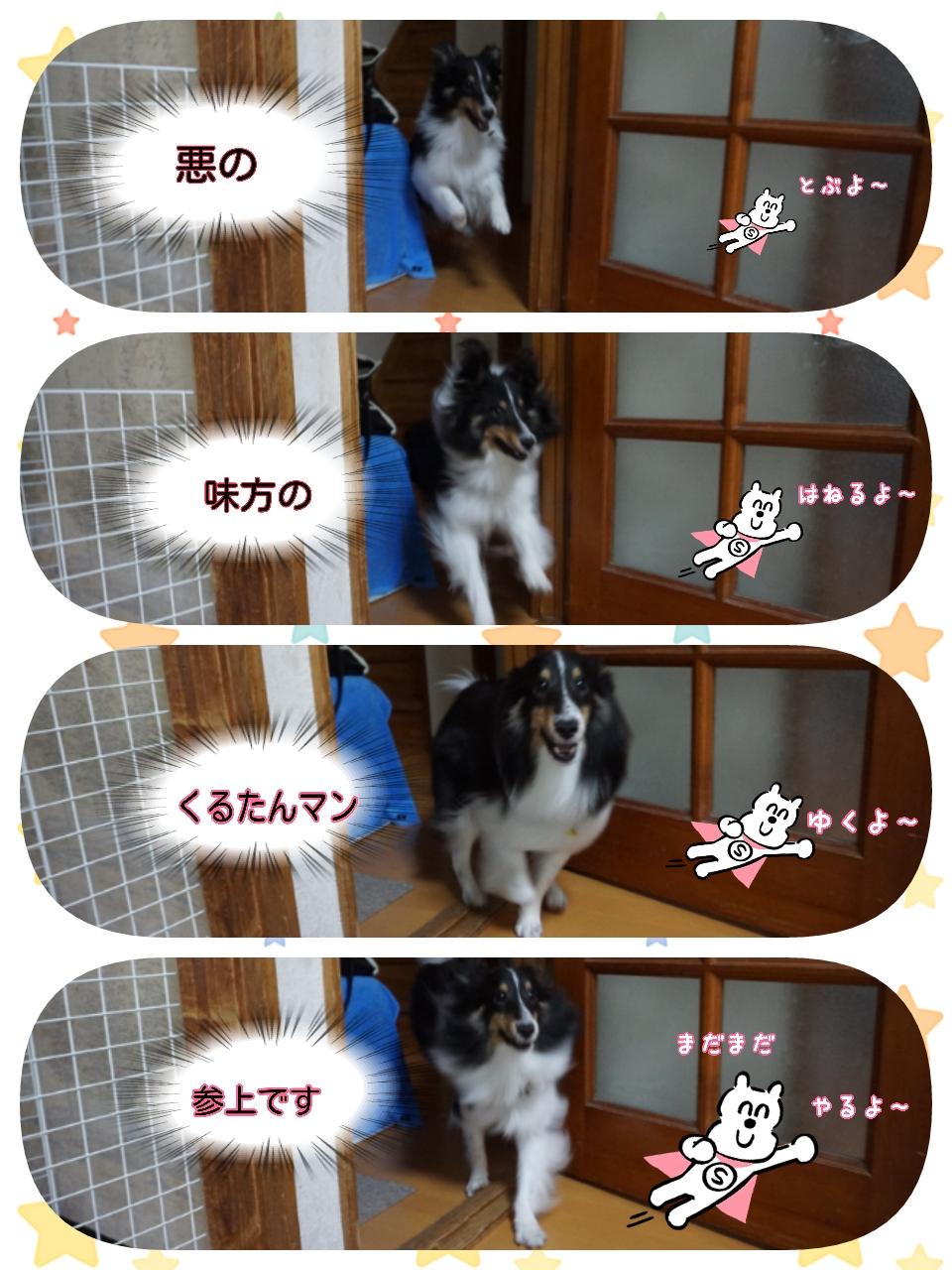 16-09-20-15-47-38-097_deco.jpg
