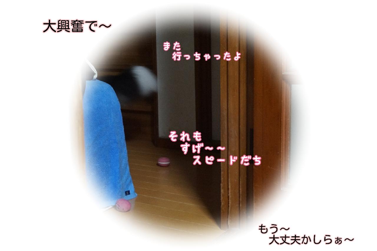 16-09-20-16-11-43-999_deco.jpg