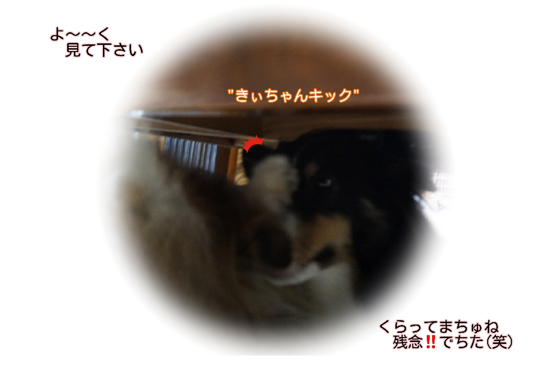 16-09-22-01-29-40-562_deco.jpg