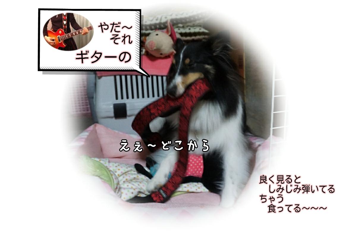 16-09-22-10-15-58-092_deco.jpg