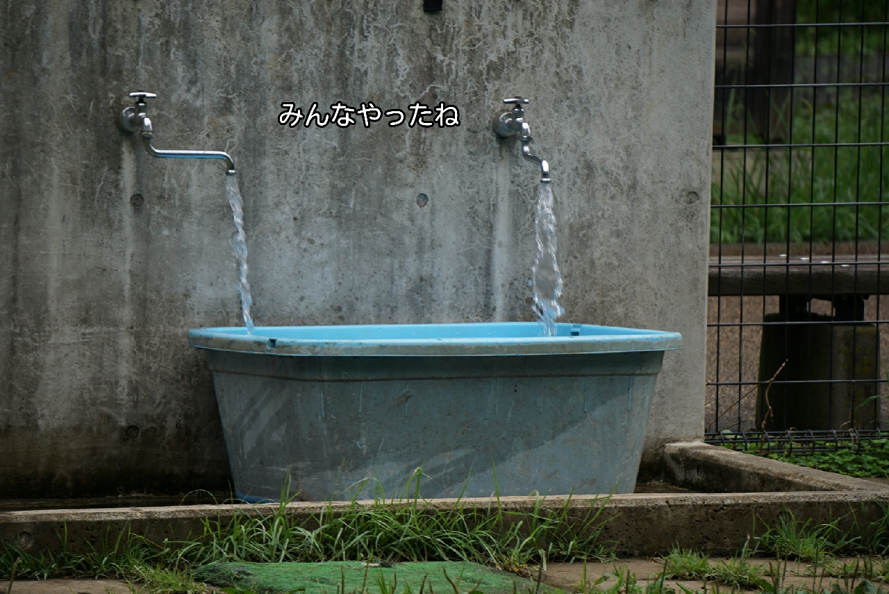 16-09-25-09-43-40-894_deco.jpg